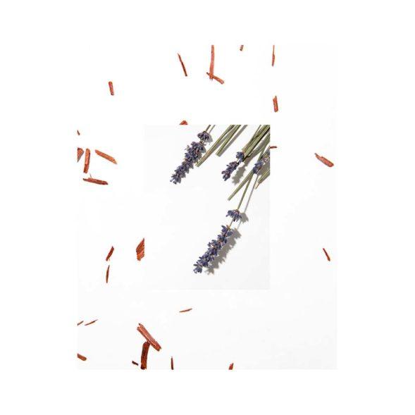 Stop The Water All Natural lavendli-sandlipuu taastav palsam lavendel